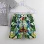 Conjunto 1+1 Baby Easy Camiseta Cinza + Bermuda Tactel Estampada